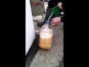 Вот почему бензин нельзя заливать в пластиковую тару