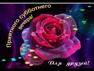 doc217777386_475121018.mp4
