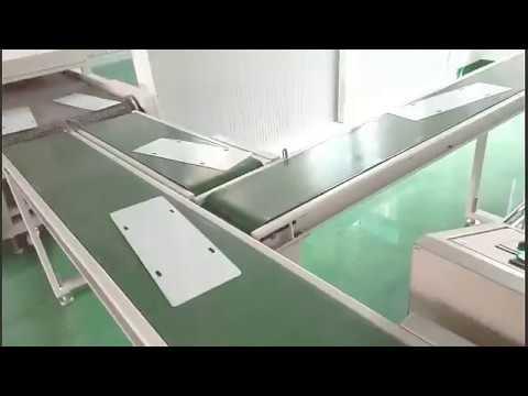 StraightInclining Belt Connect Conveyor CC-2