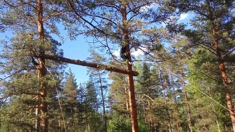вы что дураки что ли вы дерево на дерево тащите ч.2