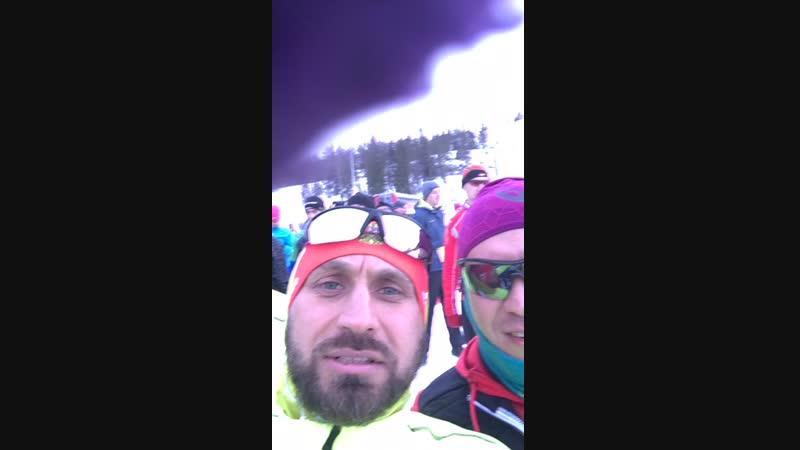 Iceonego бриф перед стартом забега