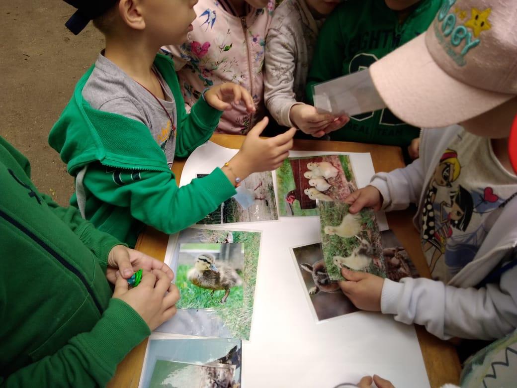 Читатели библиотеки №27 Ховрина побывали на «Экологической поляне»
