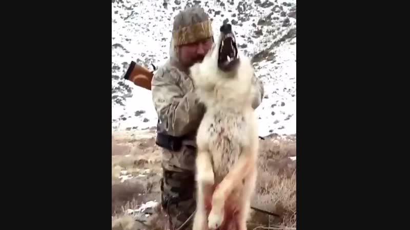 [v-s.mobi]Волка голыми руками.mp4