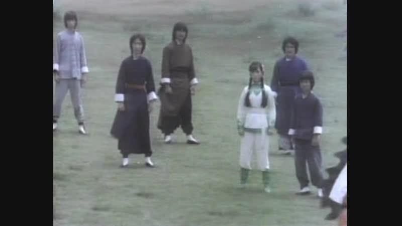 Странствующий монах / Shaolin Monk Fights Back (1980)