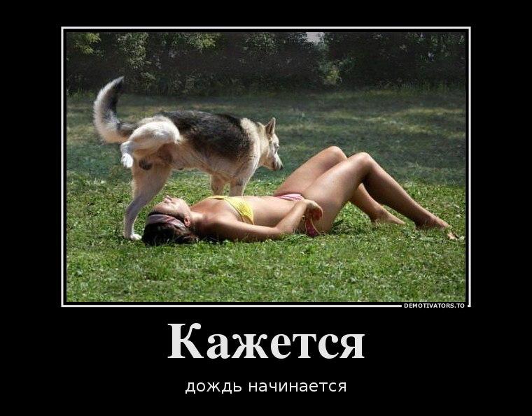 Академии казахстан алматы кинологический клуб империя неудача