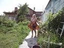 В Дивеево в огороде у Галы розы и топинамбур