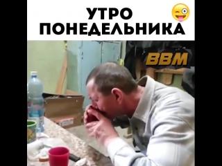 big_black_mom_BhDq0CVnONo.mp4