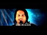 Taher Shabab, Sediq Shabab & Khaled Kayhan - Gul Begom.mp4