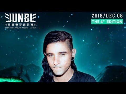 Skrillex Live Electric Jungle Music Festival 2018 China