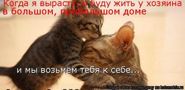http://cs310917.vk.me/v310917254/6a5e/FG35wlHmcKw.jpg