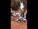 Аллах гневается: Ваш пикник не достаточно халялен! Саудовская Аравия