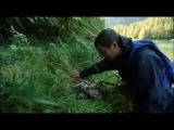 Ultimate Survival Bear Grylls bear footprints / Выжить Беар Гриллс медвежьи следы.