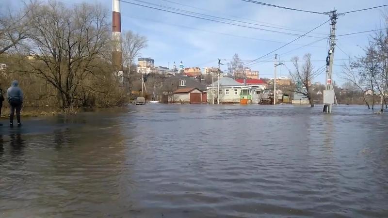 Разлив реки Тускарь в Курске. Апрель 2018