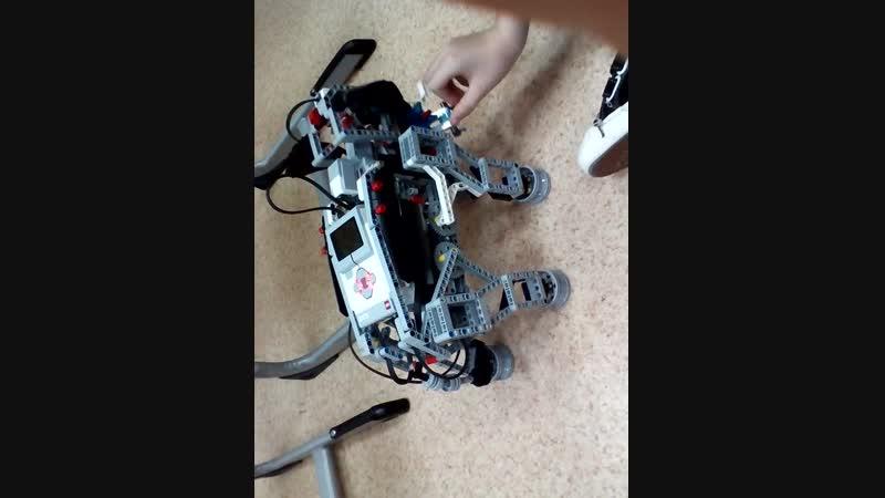 Робототехника Слоны