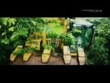 Музыка из проморолика Discovery - Золото джунглей (Россия) (2013)