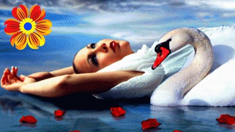 Дуже щира і душевна пісня - Білий лебідь - Ірина Лончина (Українські Хороші Пісні)