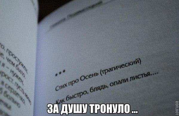 Жизнь и юмор  - Страница 16 LqKLt8PS40k