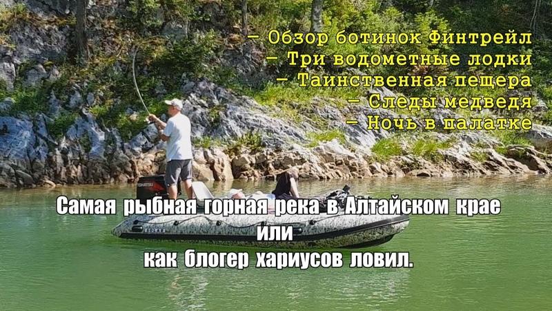 Самая рыбная река в Алтайском крае Где то рядом медведь Ботинки ФИНТРЕЙЛ Пещера выдра и бобер