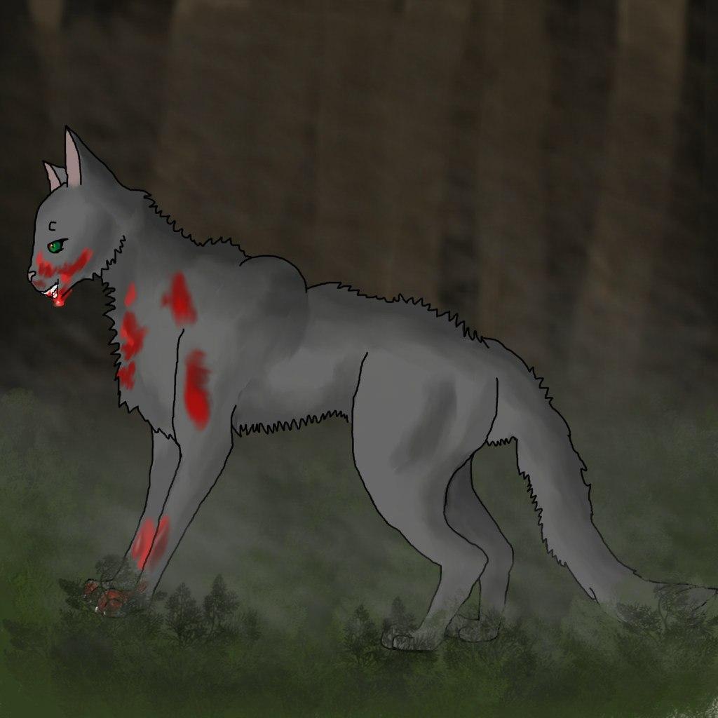 Обои морда, Хищник, угроза, дикая кошка, пасть, клыки, ссора, оскал, ярость, рык, Белый тигр, злость. Животные foto 16