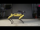 You reposted in the wrong neighborhood (Boston Dynamics Edition)