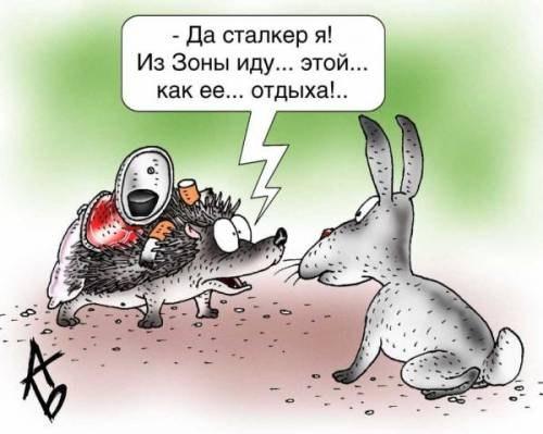 сталкер на аву: