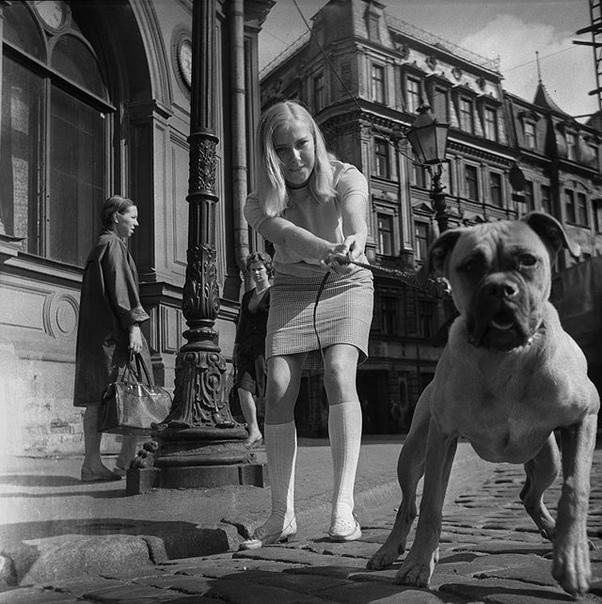Фото дамы с собачкой.
