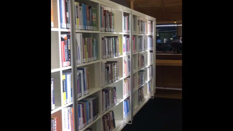 Библиотека Амстердама. Динкины рассказы