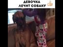 Девочка лечит собаку