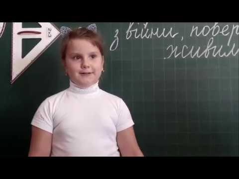 Шкільний Флешмоб Привітання воїнів АТО від учнів Новоселівської школи День Захисника України 2018