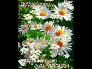 doc330547425_499975001.mp4