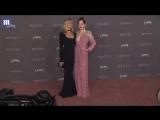 Дакота и Мелани на LACMA Art + Film Gala (04.11.2017) 3