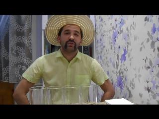 2 сезон. Эпизод 1. 23  февраля - Аmigos & la Chica!