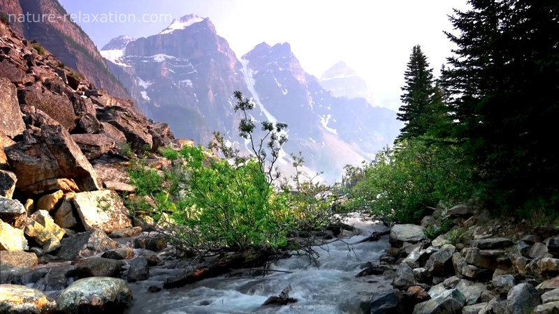 The relaxing sounds of the river - Gentle river, the sounds of nature, singing birds. Alaska Nature