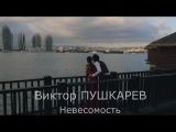 Виктор ПУШКАРЕВ - Невесомость