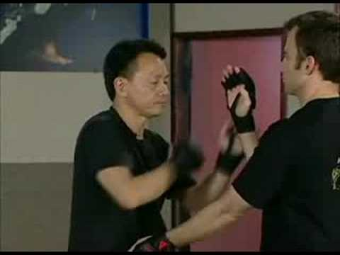 Sifu Chow Sticky Hands initiating moves