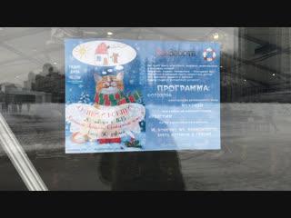 Выставка кошек Святки и котятки в Казани