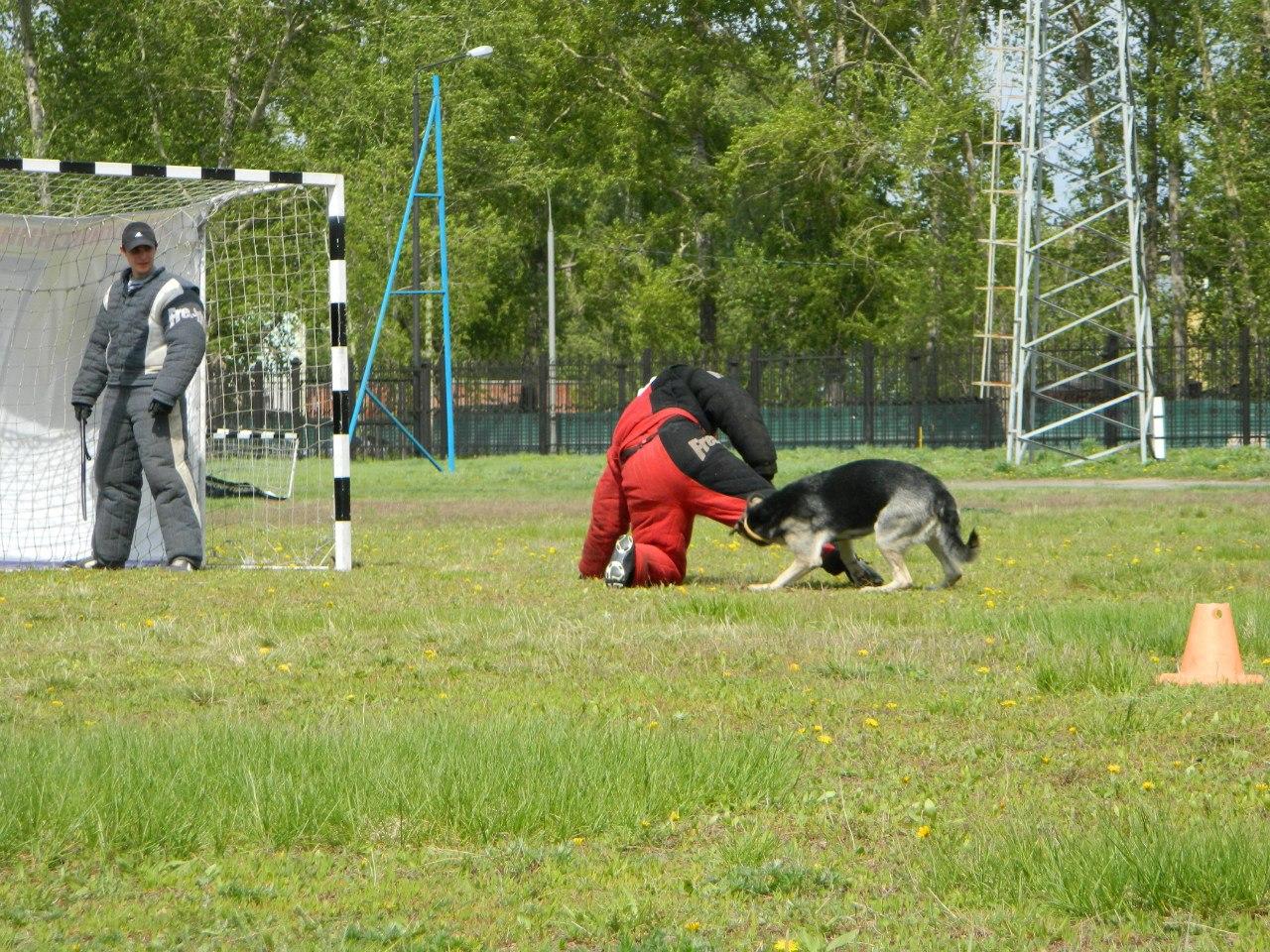 Русский ринг 24.05.14 Новосибирск U95KUpp27FQ