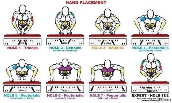 Группы мышц, задействованные в