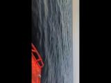 Беркут s Janet+Хонда 50, чудское, малая волна