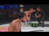 #Bellator204 Official Results Omar Morales def. Troy Nawrocki via knockout (strikes) Round 1, 058