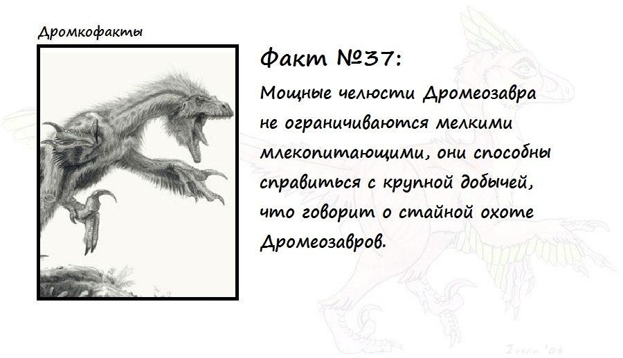 https://pp.vk.me/c620820/v620820874/1578d/Sj2b95MuVxw.jpg