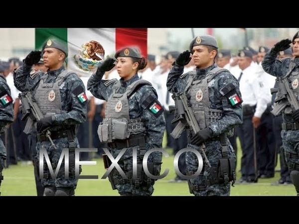 Mexico I Fuerzas Federales de México - Las Misiónes de la División de Gendarmería Nacional