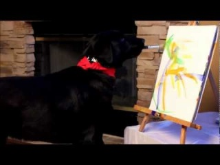 Arbor the Amazing Painting Dog