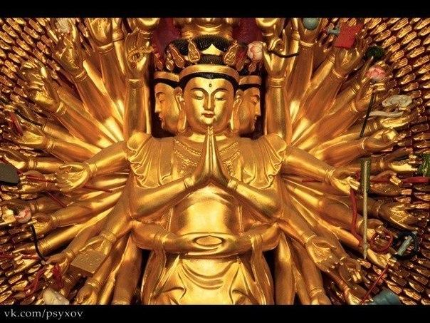 Вселенная знает, как будет лучше. Рано или поздно она сведет нас с нужными людьми и разведет с ненужными.   © Будда