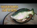 Amazon 2018 Gemmy Industries Animated Amazon Alexa Compatible Big Mouth Billy Bass
