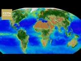 В NASA сделали ролик о последствиях изменения климата за последние 20 лет