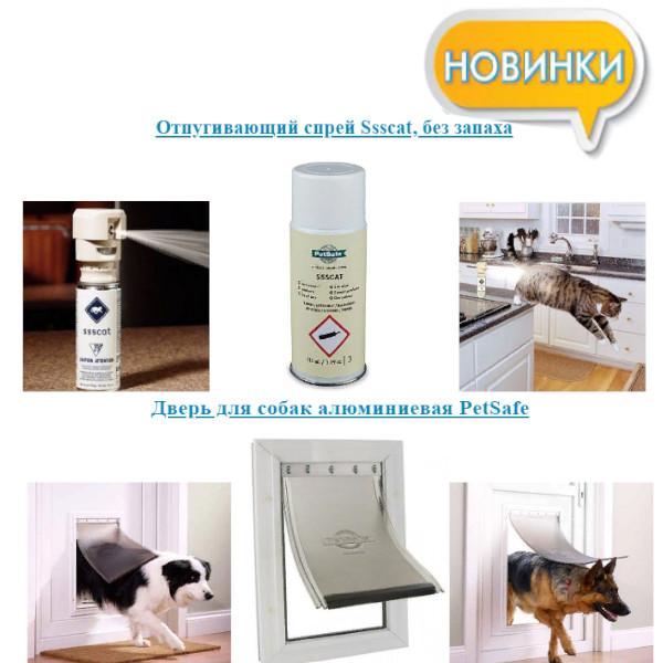 https://pp.userapi.com/c844618/v844618283/1a3450/A6IDA7flYLo.jpg