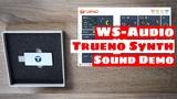 Trueno Analog Digital USB SYNTHESIZER V.1.1 - Sound Demo