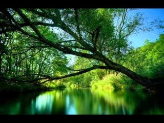 Morandi - Save Me - картинки природа