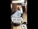 Наши юные малыши-бородачи )